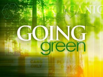 The Many Shades of green